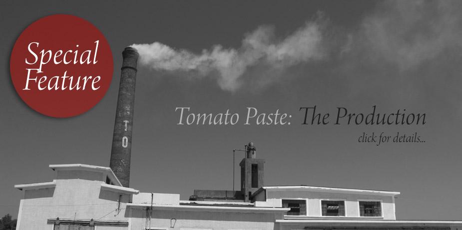 Tomato Paste Proccess