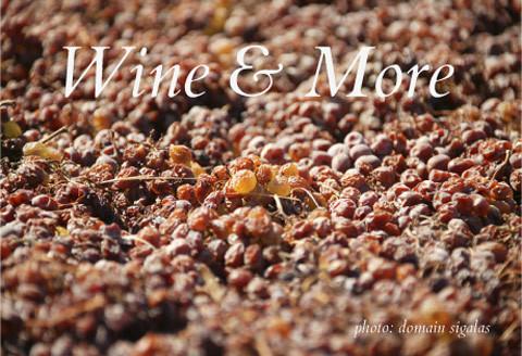 Wine & More