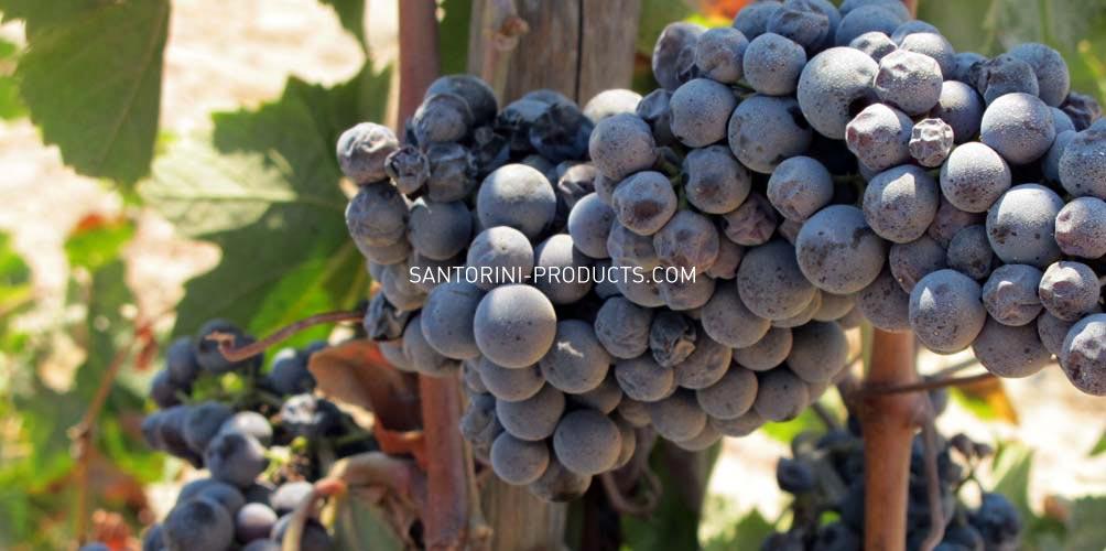 santorini-products-varieties-14