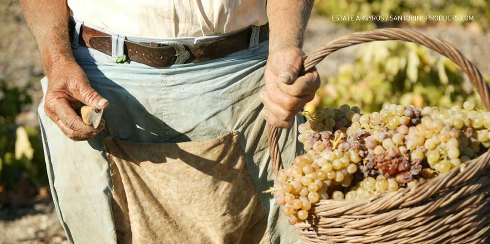 santorini-products-varieties-2