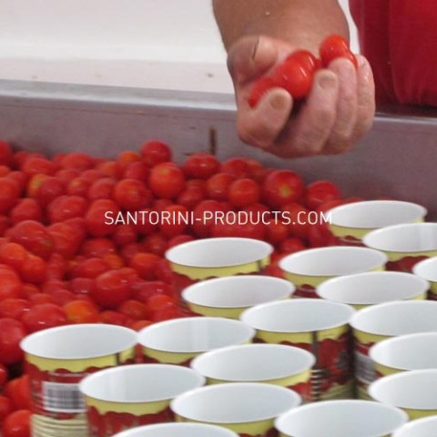 tomato-santorini-products-2