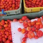 tomato-santorini-products-8