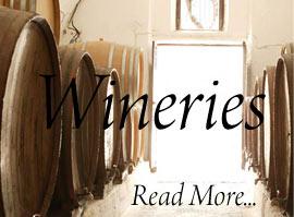 Wineries in Santorini